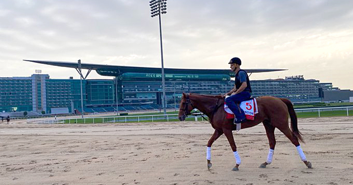Thumbnail for Dubai World Cup and Card Cancelled Six Days Out