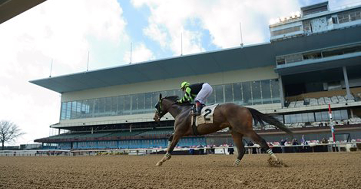 Thumbnail for Racing and COVID-19: Florida Derby Coming Up, Gulfstream Stays Tough