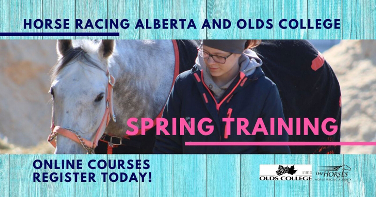 Horse Racing Alberta Licensees Offered Online Education Modules