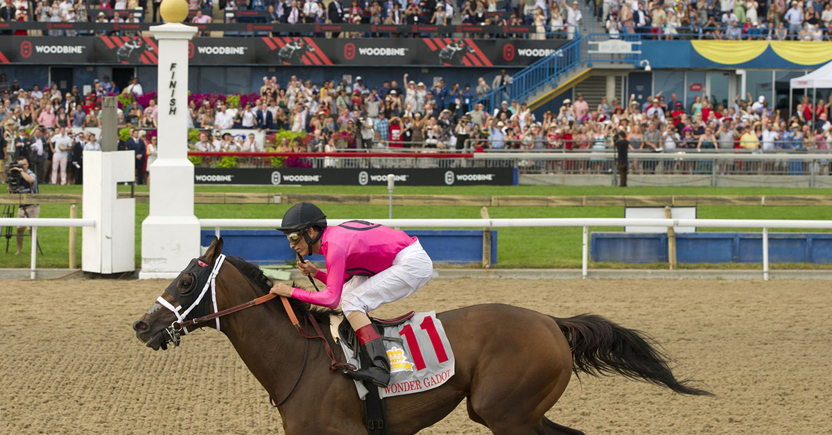 Thumbnail for 2020 Queen's Plate Officially Postponed