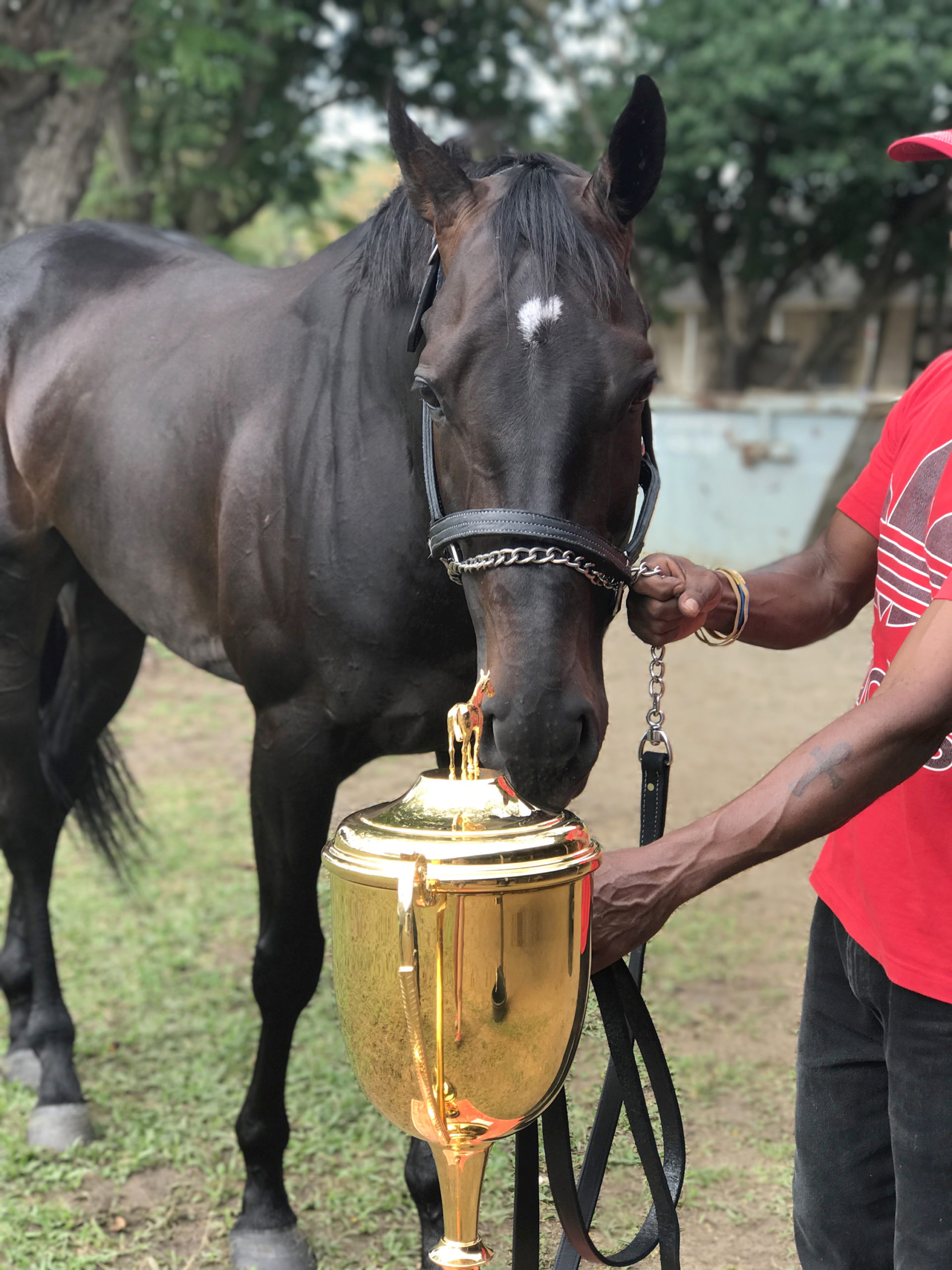 Sir Dudley with the Barbados Gold Cup