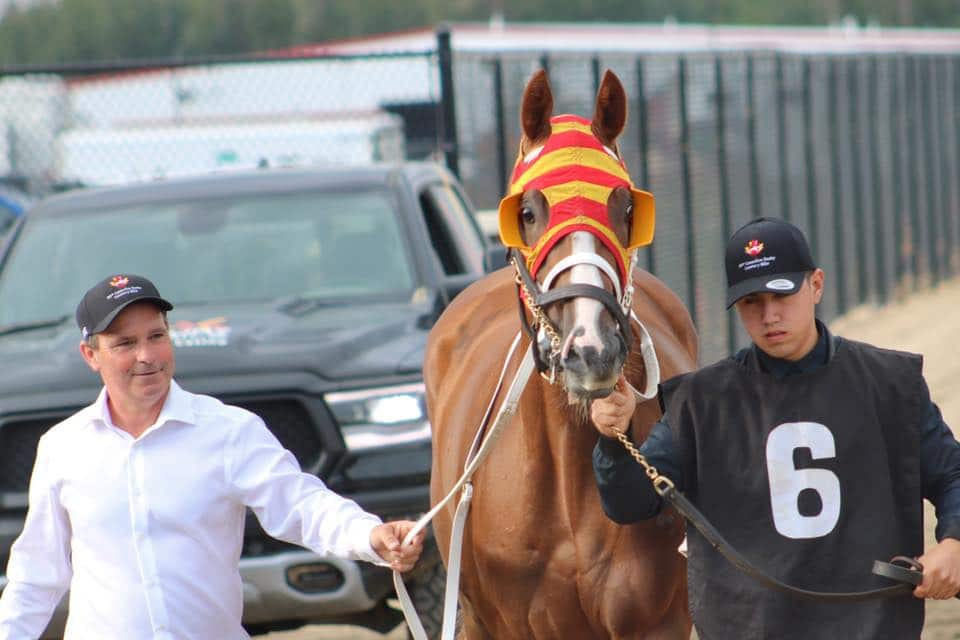 EXPLODE - Canadian Derby (G3) winner and Champion 3-year-Old in Alberta for 2019 - Photo courtesy Alberta Thoroughbred Owners and Breeders