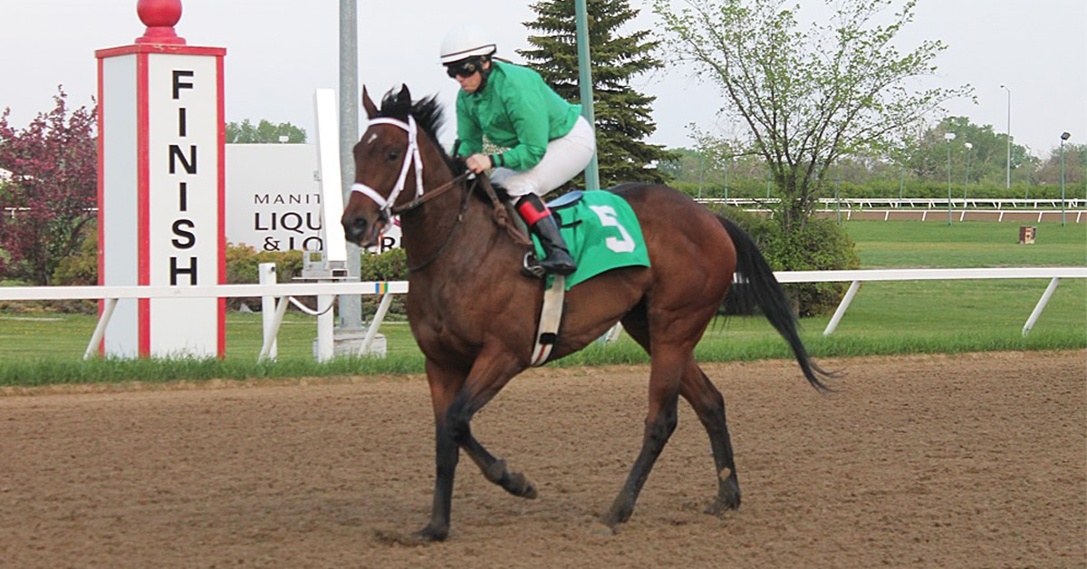 Thumbnail for And on Day 2, Assiniboia Downs Handles Whopping $1.6 million