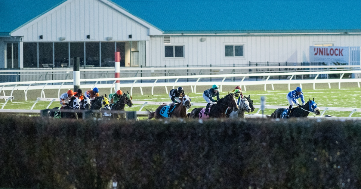 Thumbnail for Updated Woodbine 2020 Stakes Schedule Released