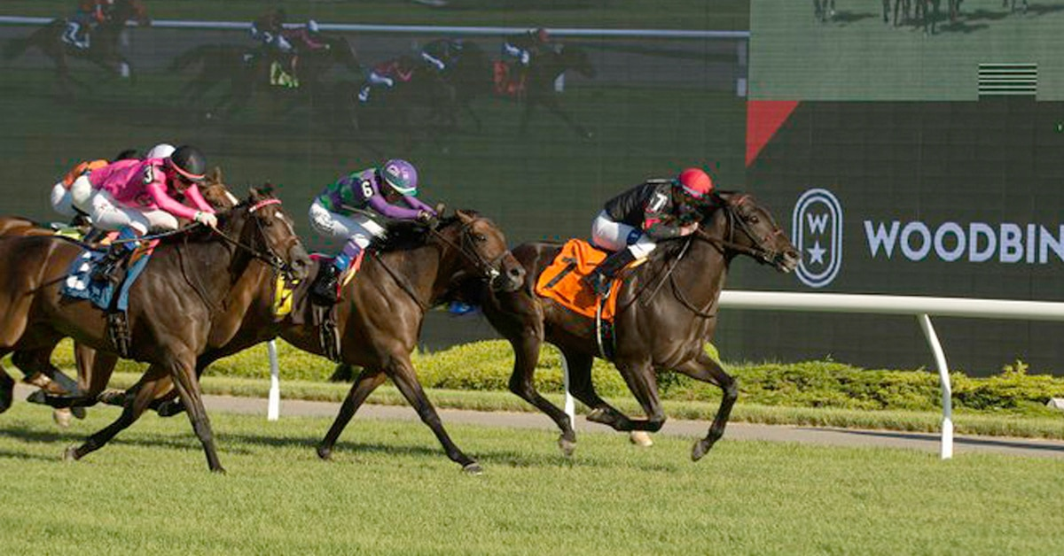 Thumbnail for Thursday Woodbine Wrap: A Poet and Racing Night Live