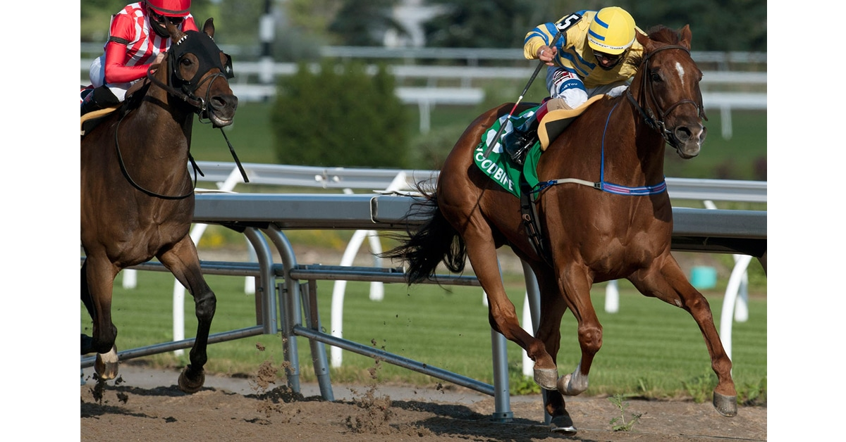 Thumbnail for Pink Lloyd Notches 4th Straight Jacques Cartier Stakes