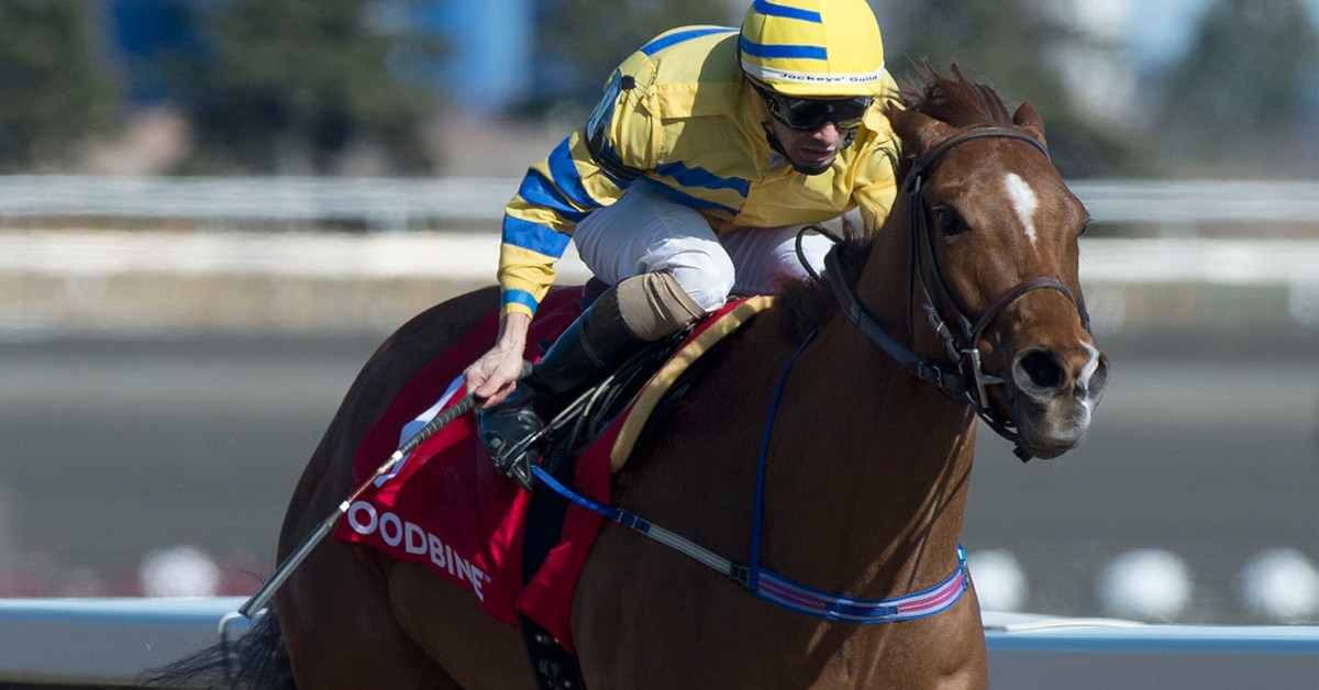 Thumbnail for Champion Sprinter Pink Lloyd Chases 4th Straight Jacques Cartier