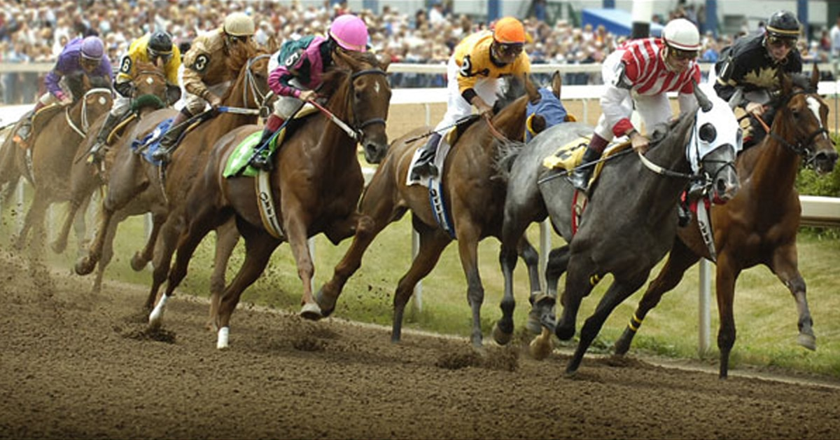 Thumbnail for Fort Erie Adjusts Post Times to Stagger Races with Other Tracks
