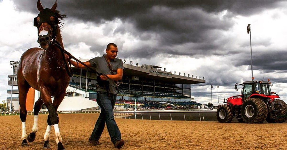 Thoroughbred racing has weathered the storm. Racing returns to Woodbine on June 6 - Woodbine photo
