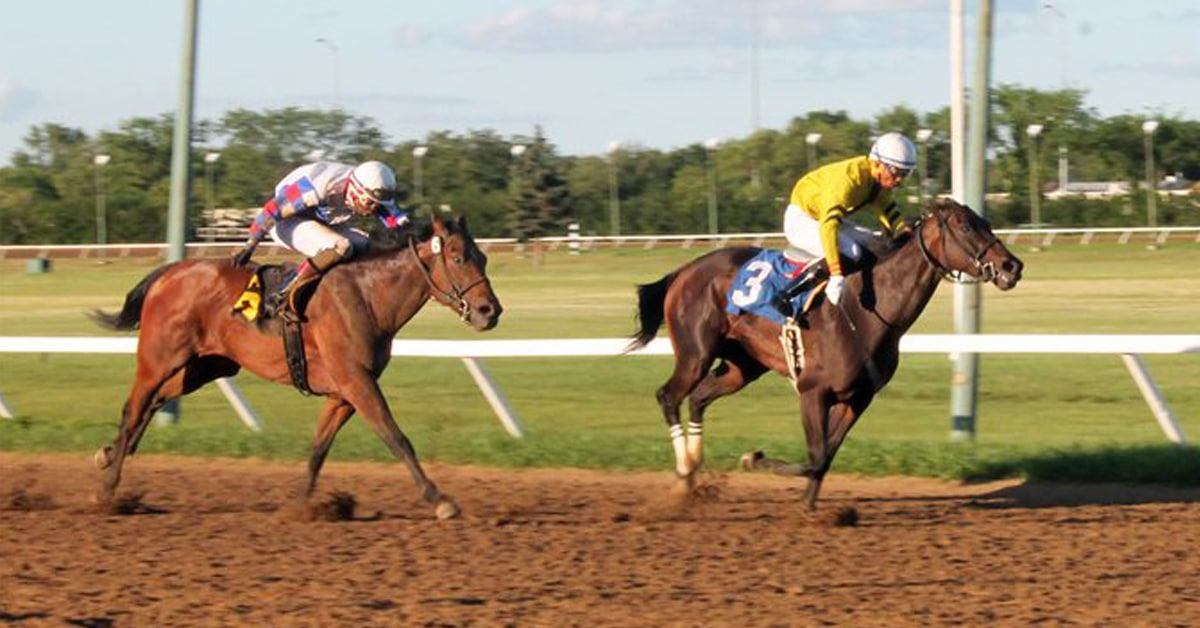 MISS IMPERIAL remained undefeated at Assiniboia Downs with this upset of previously unbeaten HIDDEN GRACE in the 44th Canada Day Stakes July 1 at Assiniboia Downs - Assiniboia photo