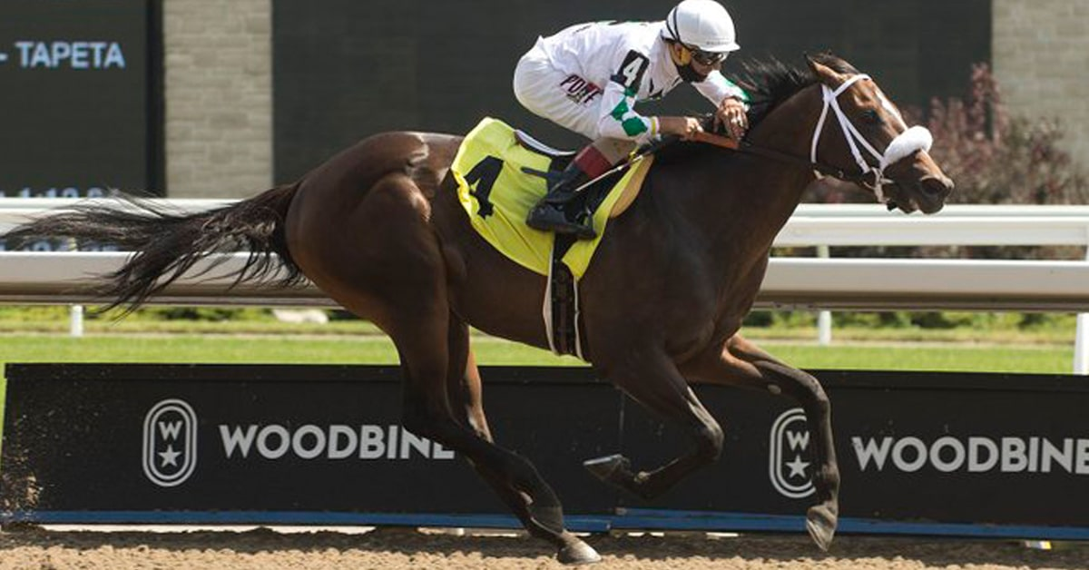 Thumbnail for Weekly Racing Wrap from Woodbine July 16-19