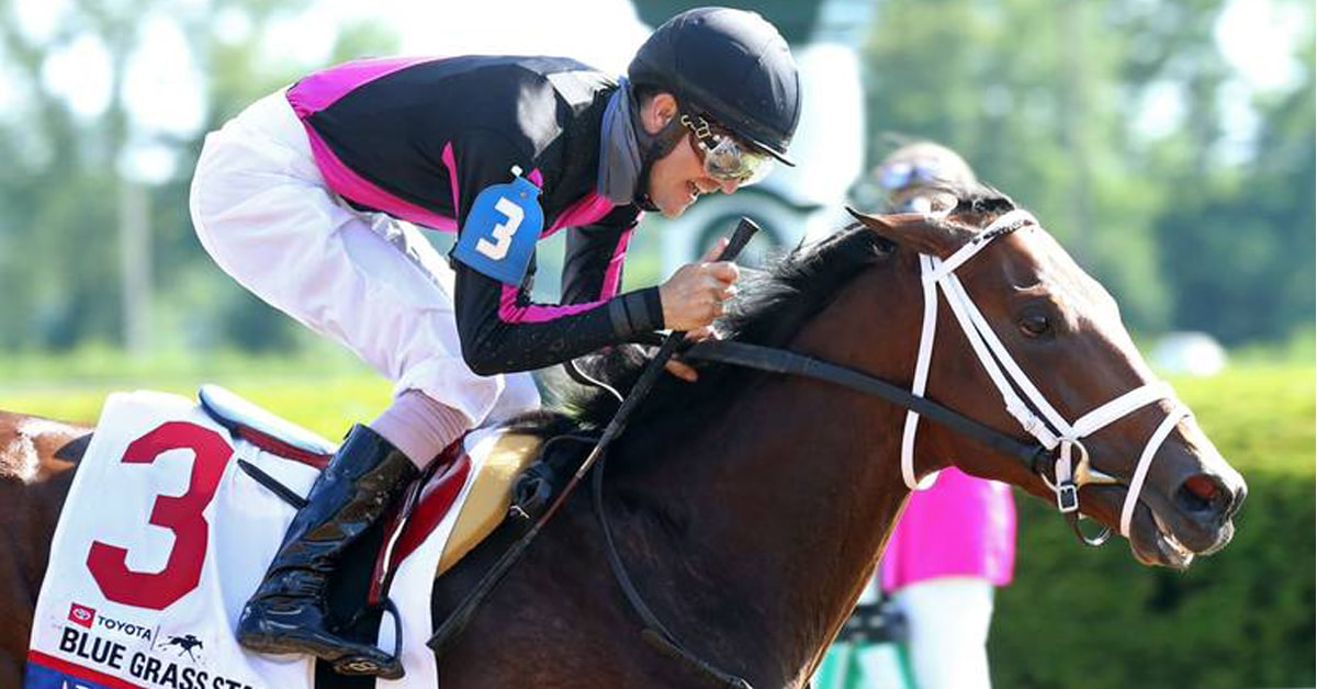 Thumbnail for Woodbine Owner Bruce Lunsford Has Derby Horse