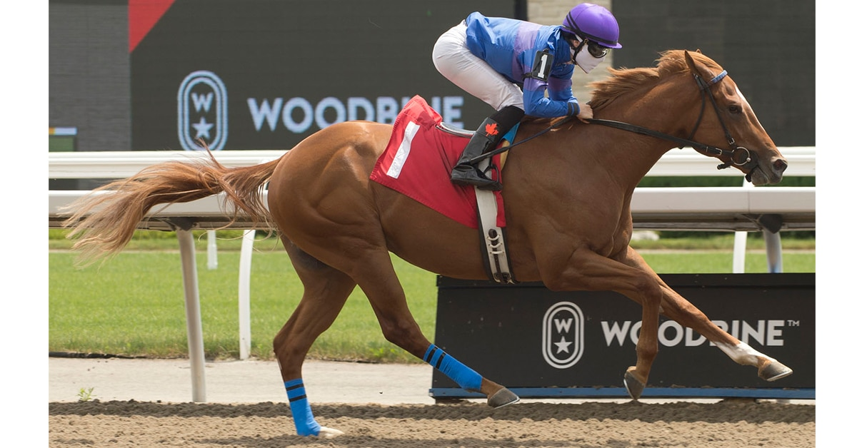 All Canadian (July 5) earning his first career win at Woodbine Racetrack. (Michael Burns Photos)