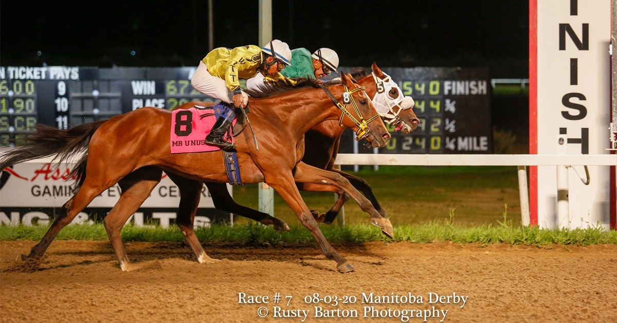 Thumbnail for Mongolian Wind in Manitoba Derby for Andy Stronach, Mongolian Stable