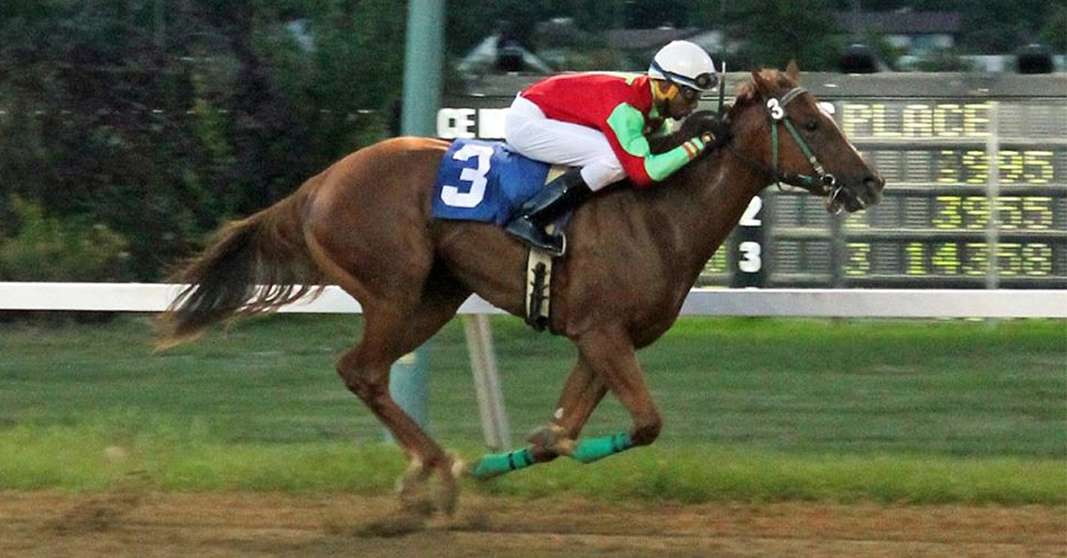 Thumbnail for Baby Watch: Two-Year-Old Stakes Winners at Assiniboia Downs