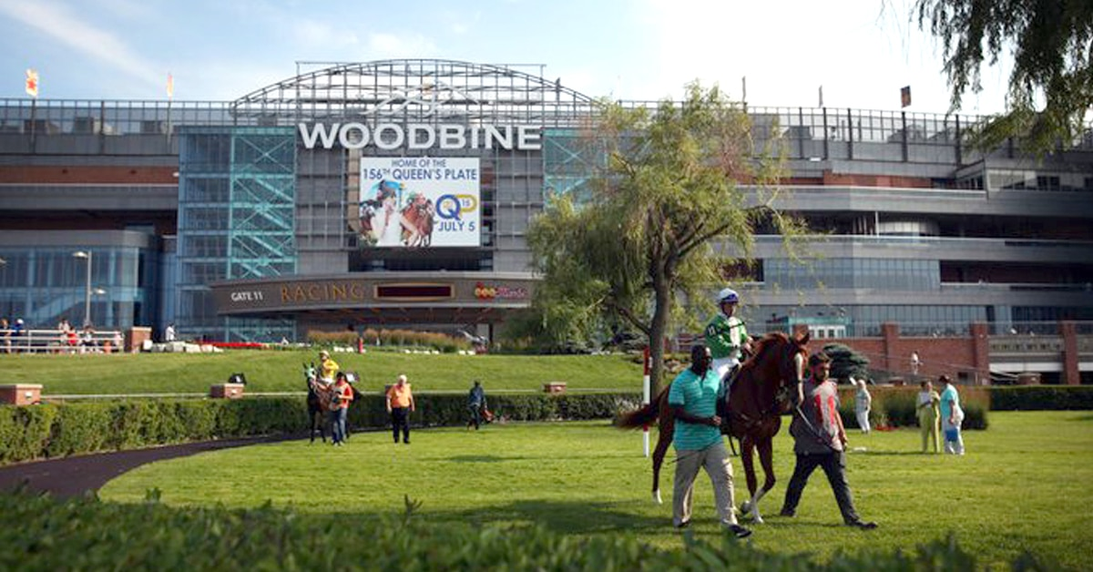 Thumbnail for Better Boogie A Good Buy for Bell; Woodbine Aug. 6 Wrap