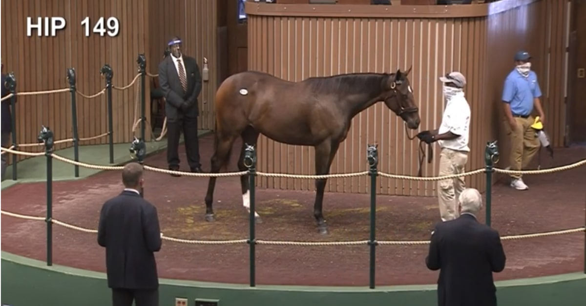 Thumbnail for Keeneland Sept. Yearling Sale: $1.25m Tapit Filly Leads Opening Day