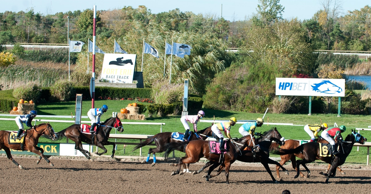 Thumbnail for Fort Erie Has Successful Season; Auntie Katherine Leading Horse