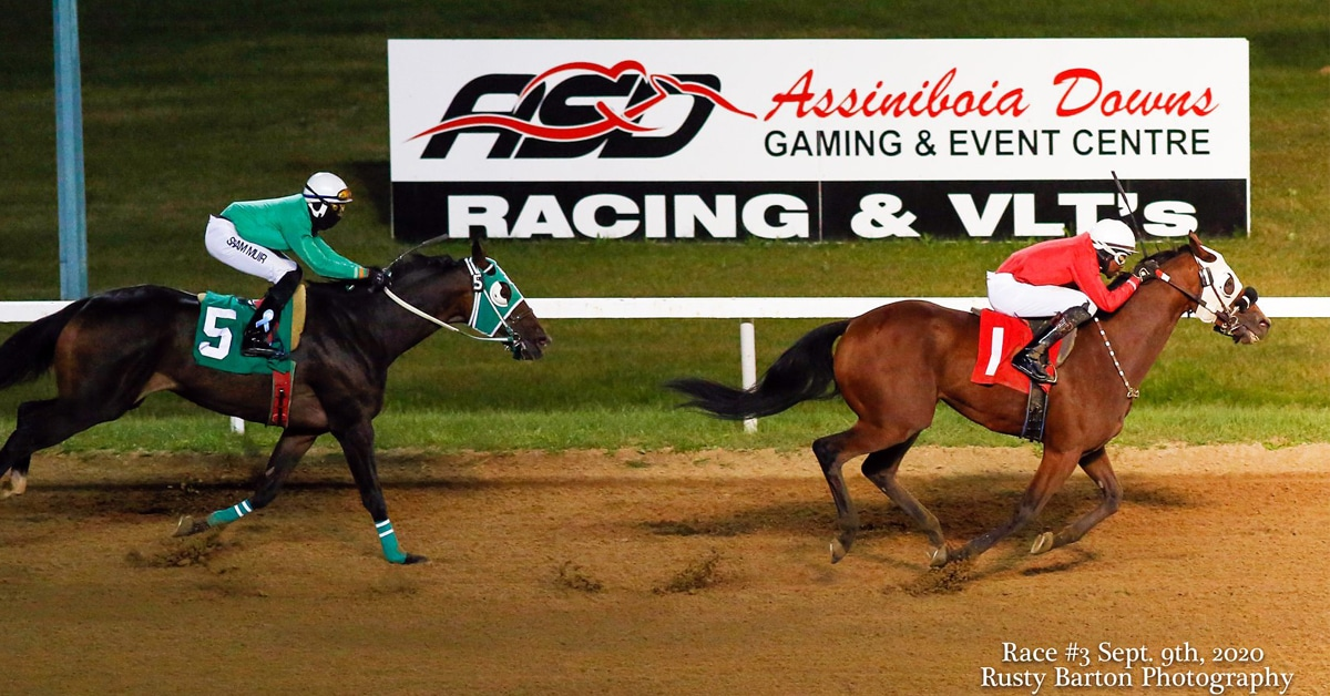 Thumbnail for Behind The Scenes at Assiniboia Downs' 2020 Season