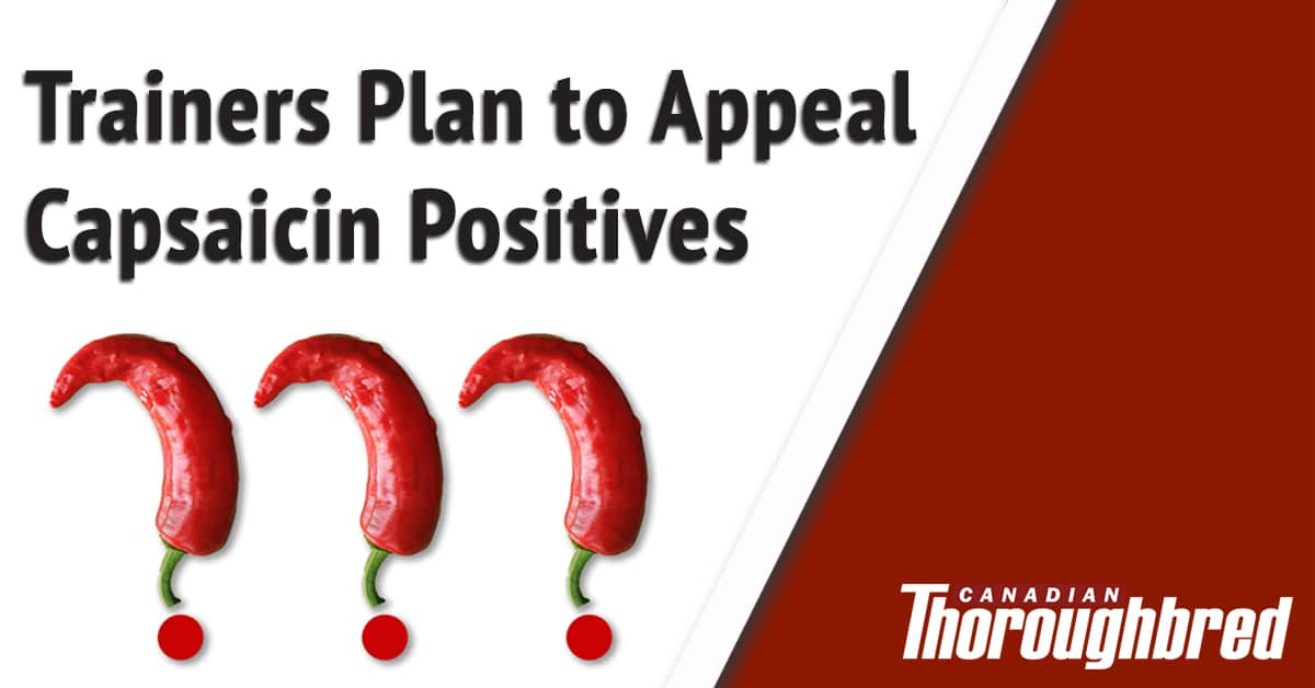 Thumbnail for More Capsaicin Positives and Still No Source Confirmed