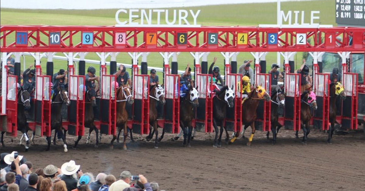 Thumbnail for Wagering on Horse Racing in Alberta Exploded in 2020