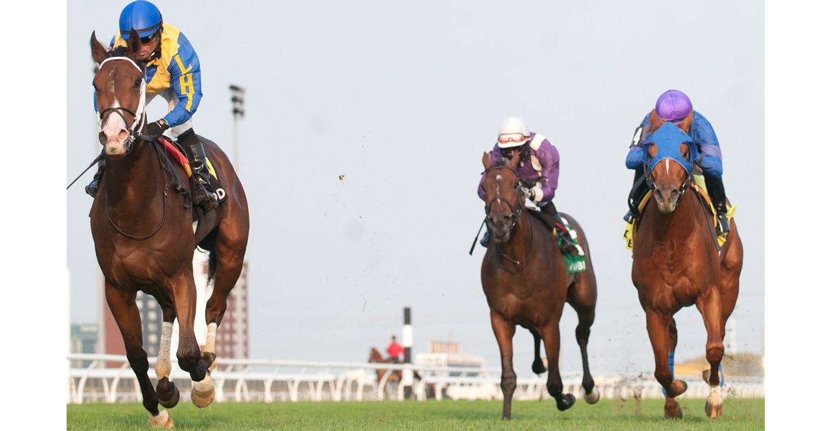 Thumbnail for $100,000 Frost King Stakes Rescheduled For Friday