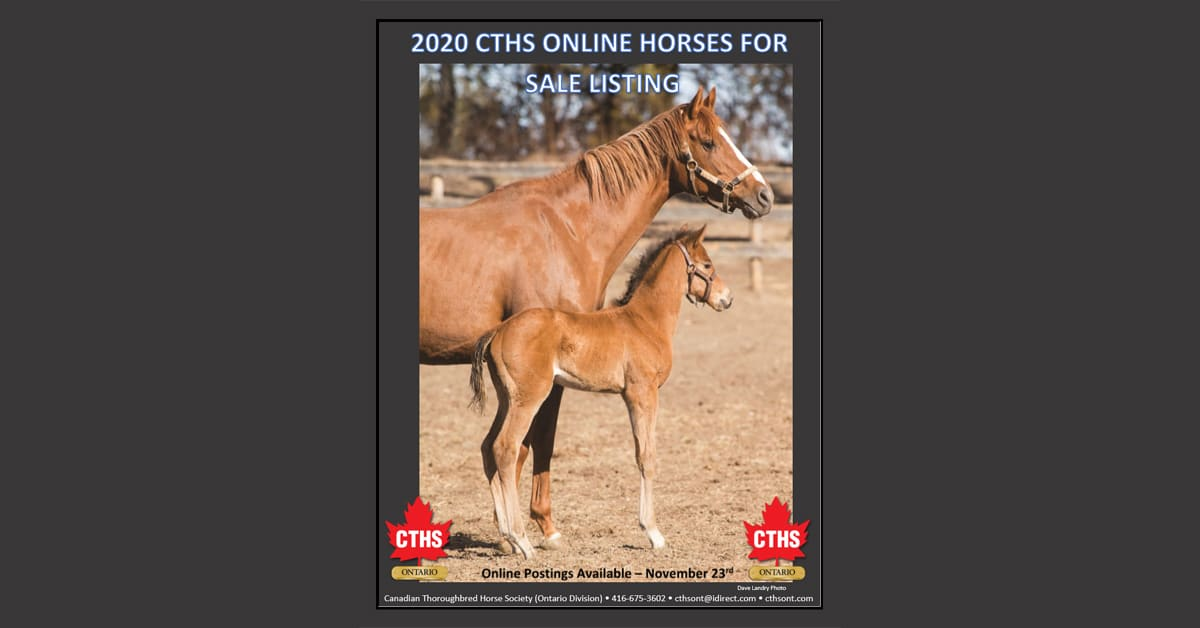 Thumbnail for CTHS Ontario Online Sale of Breeding/Racing Stock Underway