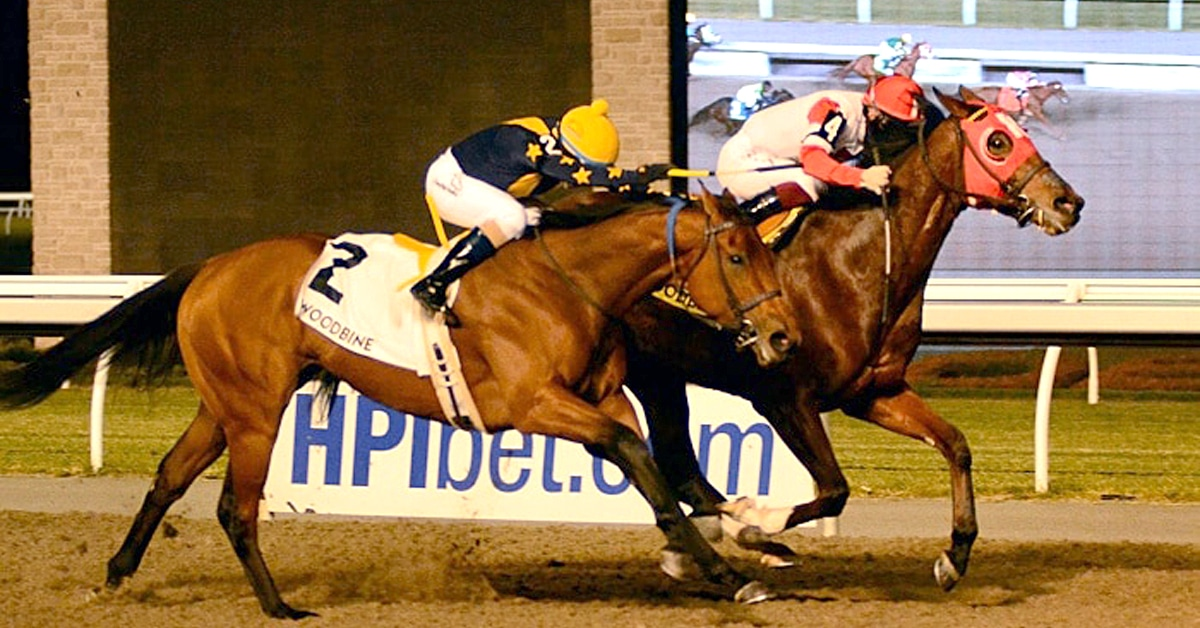 Thumbnail for Canadian Watch: Mighty Heart to Ocala, Artie's Princess in KY