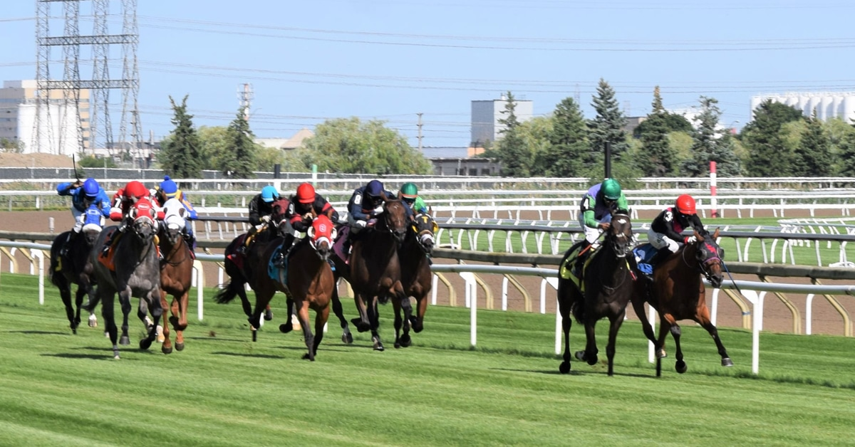 Thumbnail for New Woodbine Stakes Schedule Out May 15, June 5 Targeted for Opening
