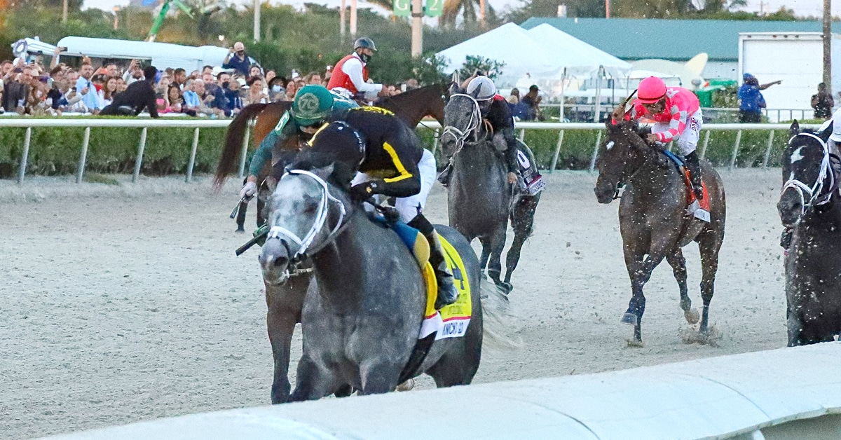 Thumbnail for Pegasus World Cup: The Incredible Rise of Knicks Go
