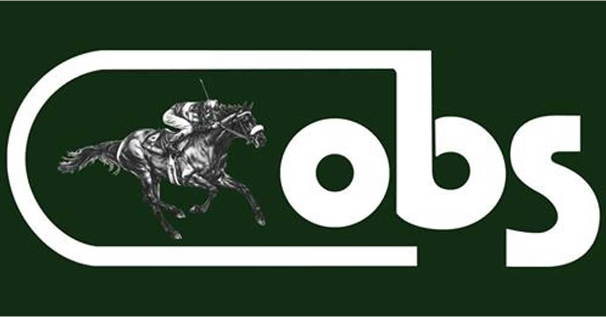 Thumbnail for Canadian Buyers At Ocala Breeders' Sales Winter Auction