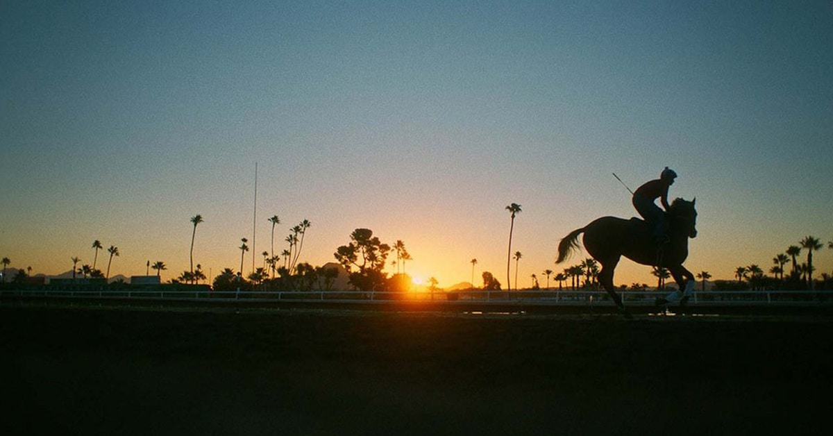 Thumbnail for 'Jockey' Movie Debuts at Sundance, Rights Obtained by Sony Pictures