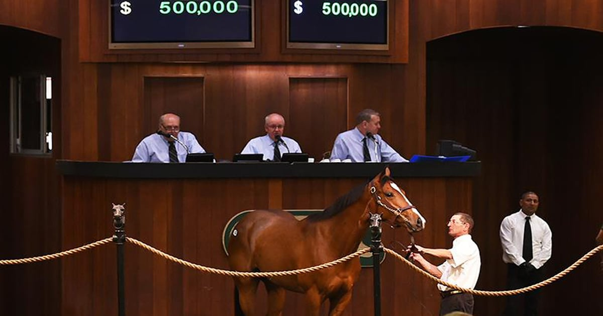 Thumbnail for It's A Go! Post Time Auctions Launches for Canadian Breeders/Owners