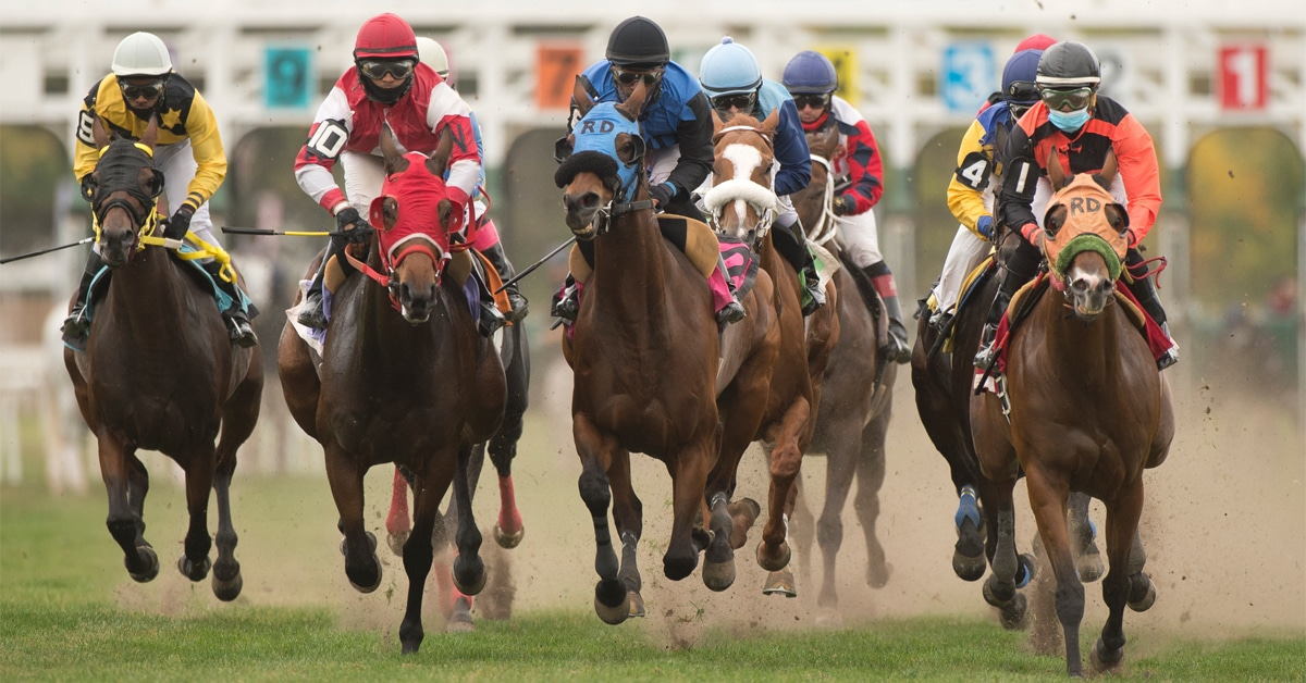Thumbnail for Fort Erie Race Track Adds Two Additional Race Days