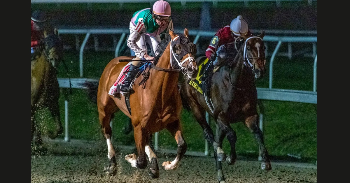 Thumbnail for Louisiana Derby on Saturday Offers 100 Kentucky Derby Points