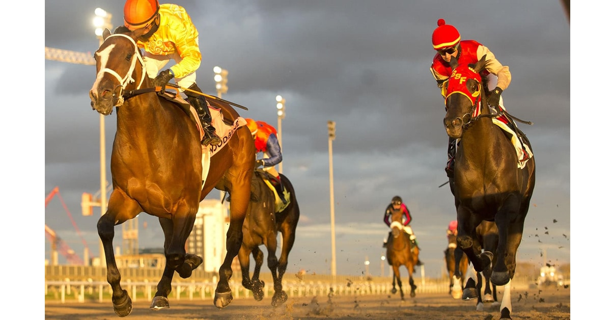 Thumbnail for 162nd Queen's Plate Update, March 31, Top 15 Contenders