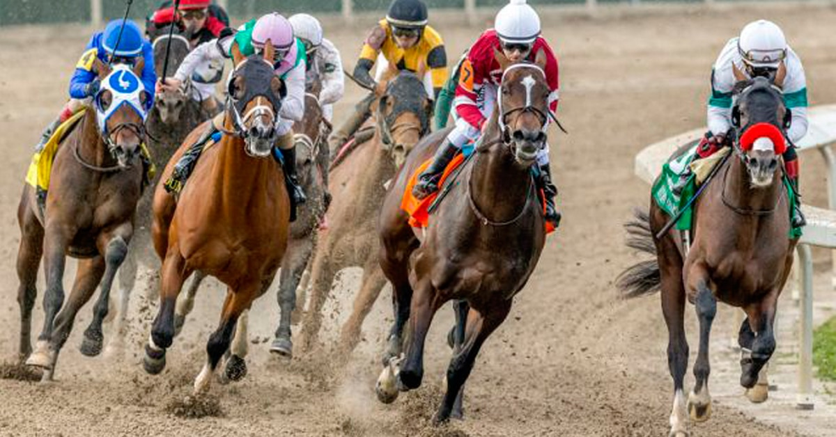 Thumbnail for Hot Rod Charlie Speeds Into Kentucky Derby Picture