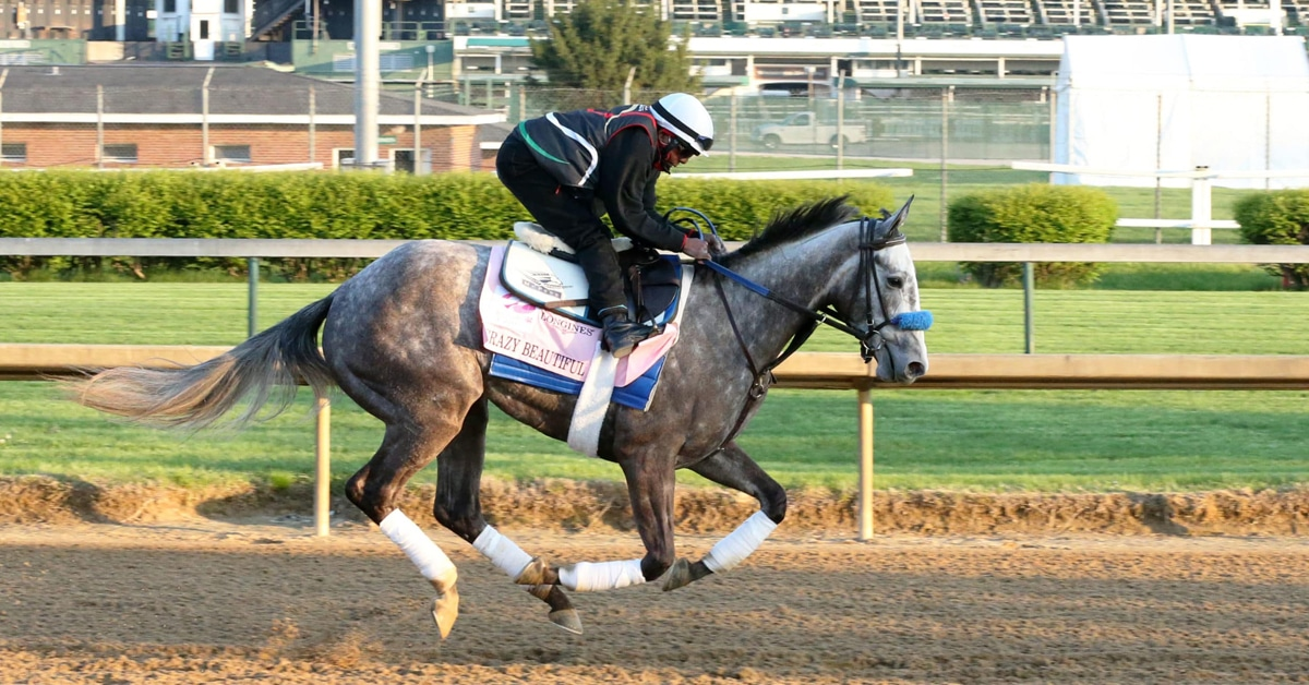 Thumbnail for Malathaat is 5-to-2 Favourite for 147th Kentucky Oaks
