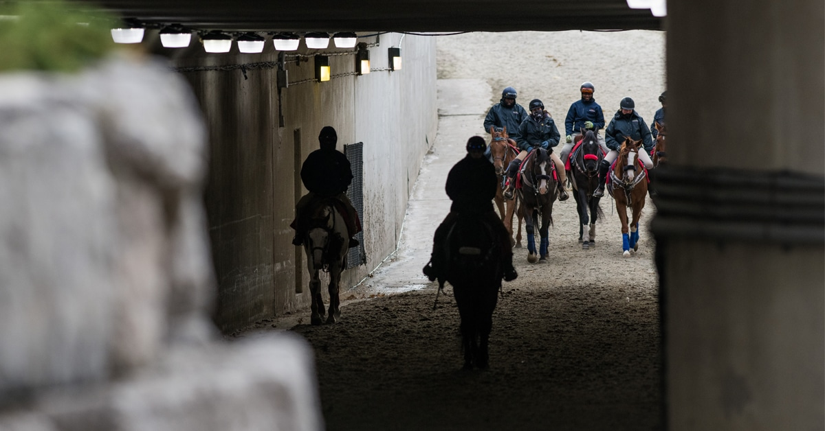 Thumbnail for Shutdown Temporarily Suspends Live Horse Racing in Ontario