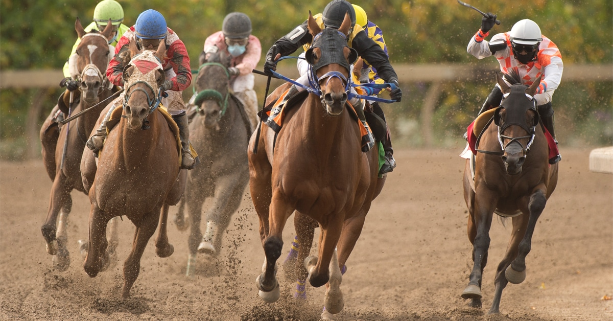 Thumbnail for Racing Returns to Fort Erie Race Track on June 15th