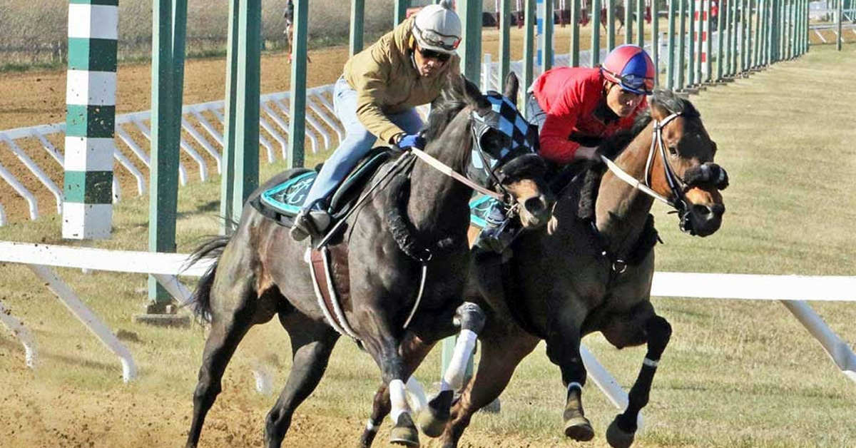 Thumbnail for Assiniboia Downs Opens May 24 With $770,000 Wagering