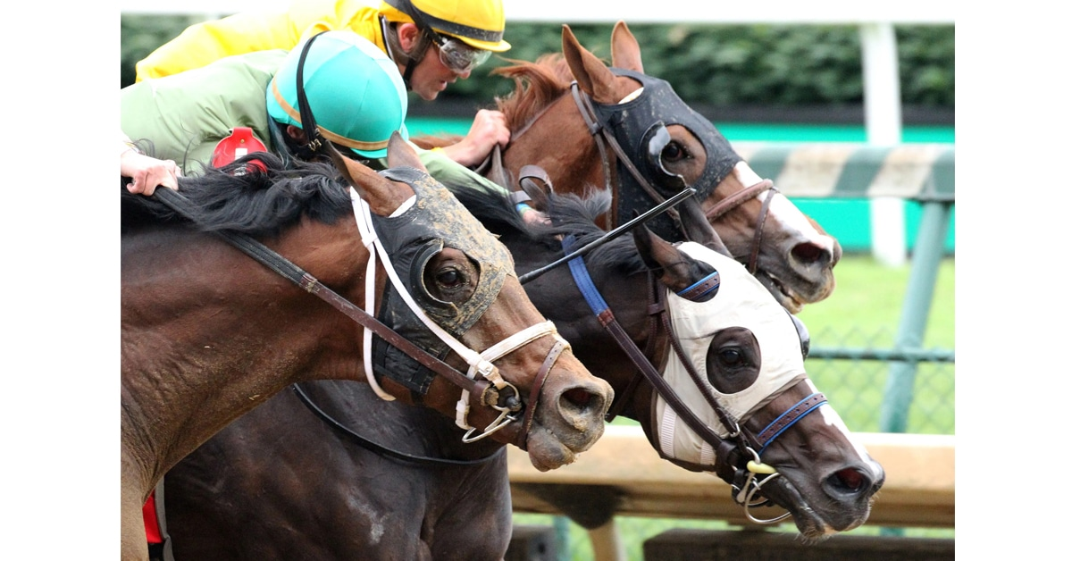 Thumbnail for Mighty Heart Battles to Big Win in Blame Stakes at Churchill