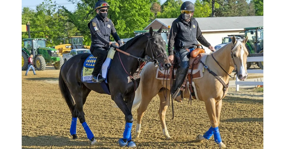 Thumbnail for Anti-Fungal Blamed for 'Spirit' Positive; Preakness a Go