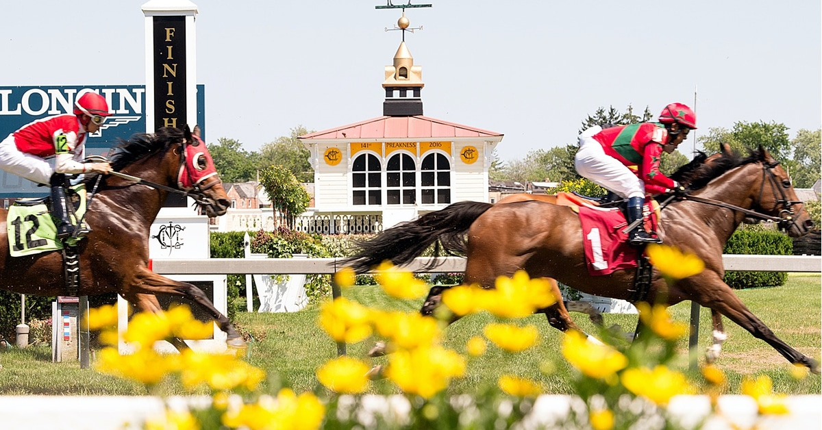 Thumbnail for Preakness Post Draw Delayed in Midst of 'Spirit' Positive