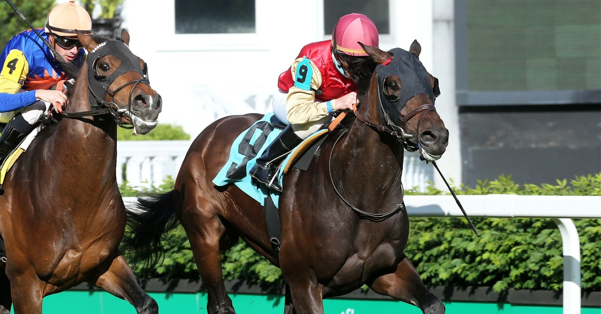 Thumbnail for Queen's Plate Update, Top 15 Contenders for May 18