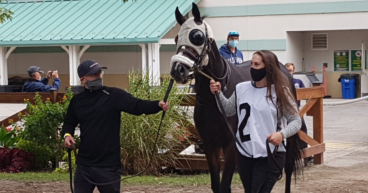 Thumbnail for Mighty Heart Tries First Stakes in US; Haddassah Starts Plate Trail