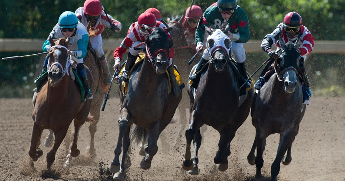 Thumbnail for Update: Increase to May Thoroughbred Benefit Payment