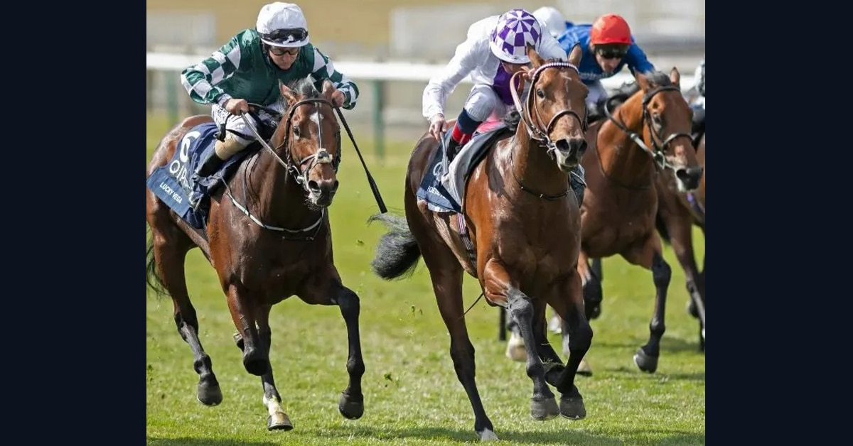 Thumbnail for Racing Recap May 1: Poetic Flair, with Cdn. Lineage, wins 2000 Guineas