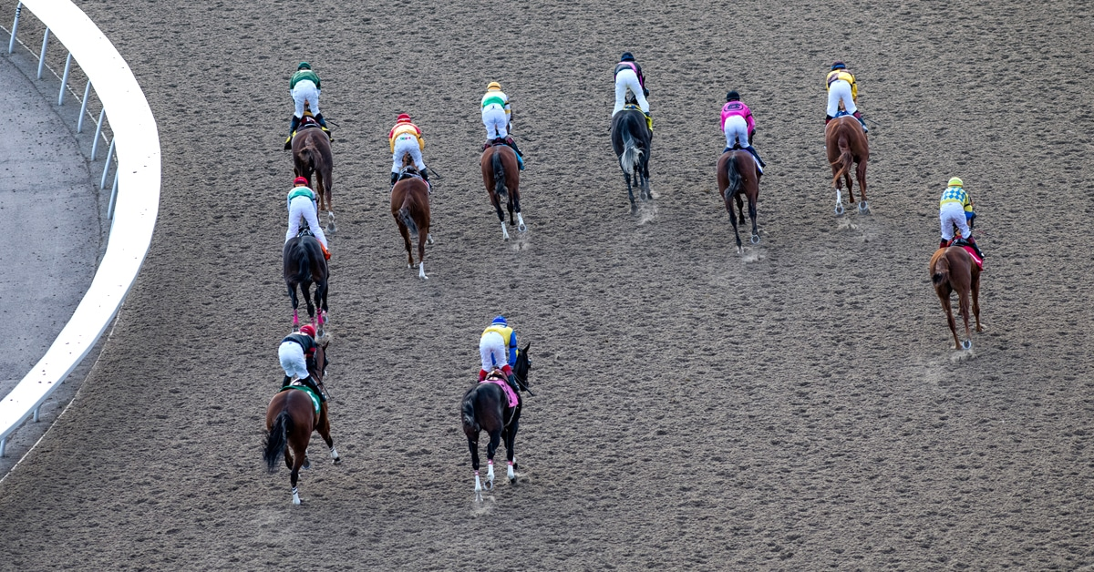 Thumbnail for Woodbine Releases Updated 2021 Thoroughbred Stakes Schedule