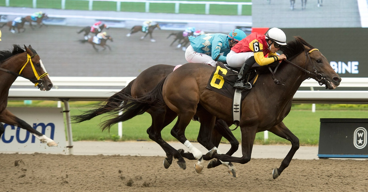 Thumbnail for Queen's Plate Update and CT's Top 15 for June 25